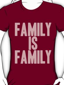 Pageant Material: Family Is Family [Song Title] T-Shirt