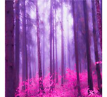 Fairytale #pink Photographic Print