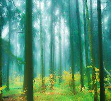 Fairytale #green by armine12n