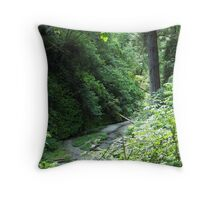 Fern Canyon_2, Northern California Throw Pillow