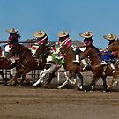 Lady Charros by Linda Sparks