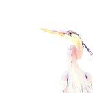 Blue heron..... by DaveHrusecky