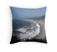 Sunshine on Agate Beach Throw Pillow