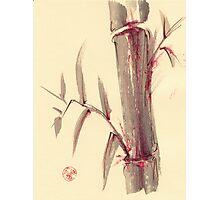 'moments'  -  mixed media bamboo wash painting Photographic Print