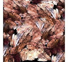 Almond pattern Photographic Print