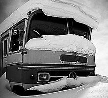Frozen Merc by Joozu