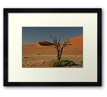 Dead tree and dunes Framed Print