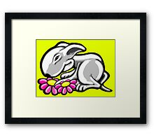 English Bull Terrier Daisy Framed Print