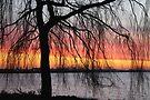Morning Sky by Jo Nijenhuis