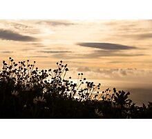Madeira sunrise Photographic Print