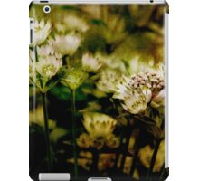 In shaded places ... iPad Case/Skin