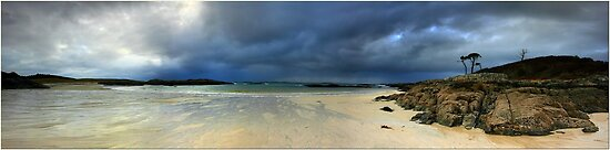 West Coast Panorama by Angie Latham