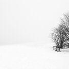 Alone by Rameez Khawaja