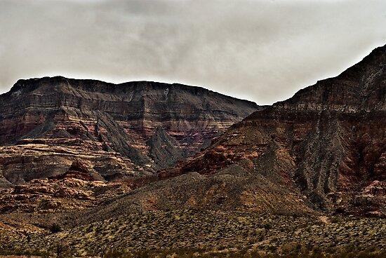 Virgin River Canyon by J. D. Adsit