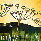 cows parsley in spring by margaretfraser
