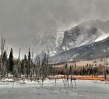 Winter storm by zumi