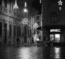 Lone Bicyclist at Night. Reggio-Emilia, Italy 2009 by Igor Pozdnyakov