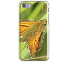 Butterfly,or moth ? iPhone Case/Skin