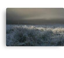 Morning Fog at Astrup Canvas Print