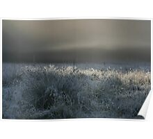 Morning Fog at Astrup Poster
