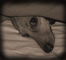 My Little Rosie by Chazagirl