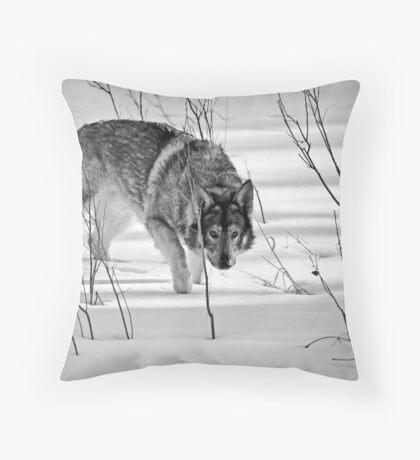 My Buddy Lobo - Creep Throw Pillow