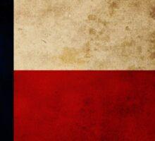 The Texas Flag Sticker