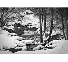 Still Snowing Photographic Print