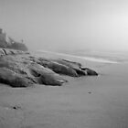Foggy Beach by Zane Paxton