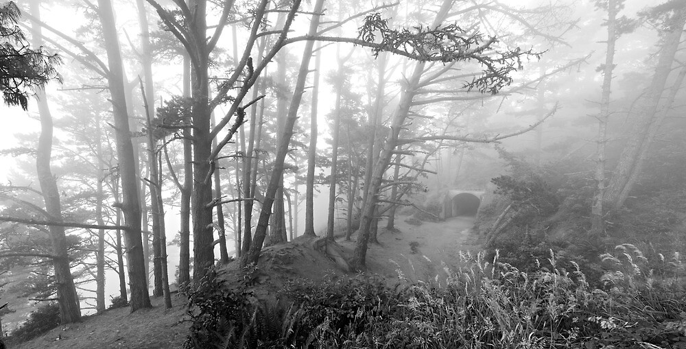 Construction 129 in the Fog-B&W by Zane Paxton