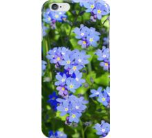 Forget Me Not - Macro iPhone Case/Skin