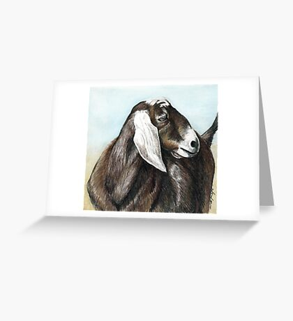 Nubian Goat Colored Pencil  Greeting Card