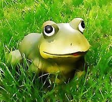 A frog by OlaG