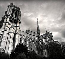 Notre Dame de Paris by Daniel Nahabedian