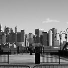 View of New York City Skyline by Susan Russell