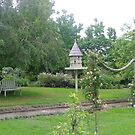 charming garden on South coast New South Wales by BronReid