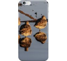 Mirrored Dowitchers iPhone Case/Skin