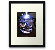 My coral reef in a cookie jar Framed Print