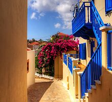 Blue paint and Bougainvillea by Tom Gomez