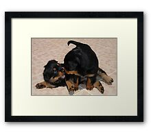 """Rough and Tumble"" Rottweiler Puppies Framed Print"