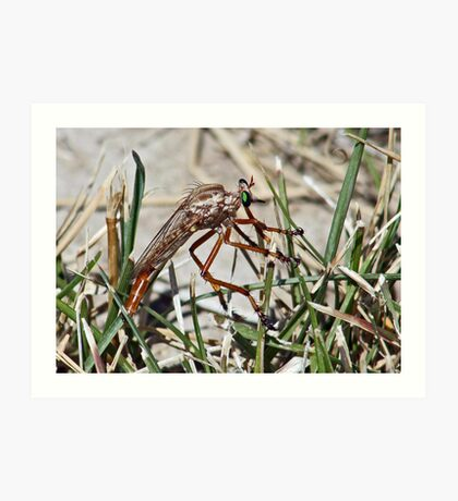Big Ugly Bug with Pretty Green Eyes Art Print