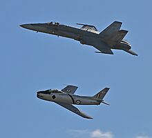 Hornet and Sabre by bazcelt