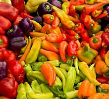 A Rainbow of Peppers by Zane Paxton