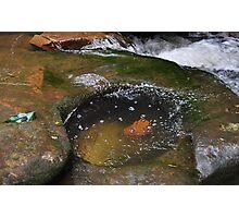 sidetracked Waitui Creek, Mid North Coast Aust Photographic Print