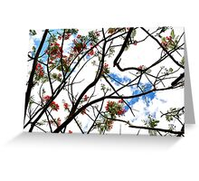 Floating Through the Trees Greeting Card
