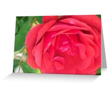 RED SINGLE Greeting Card