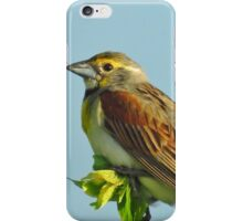 Mister Dickcissel iPhone Case/Skin