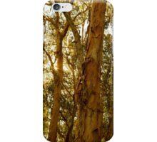 Glowing Paperbark iPhone Case/Skin