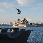 seagulls in front of Opera House by Puppy2