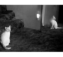 Slick's Reflection Photographic Print